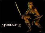 The Elder Scrolls III: Morrowind, Elf