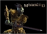 The Elder Scrolls III: Morrowind, Miecz